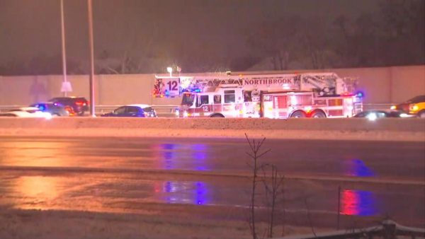 Illinois State Trooper Struck, Killed by Vehicle on I-294