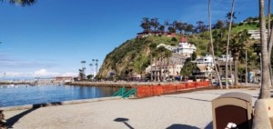 Santa Catalina Island: magic at your fingertips | Chicago News