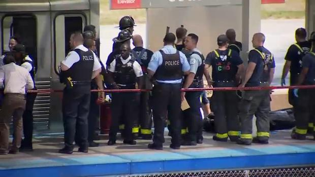 [CHI] Woman Killed by Train While Trying to Get Dropped Phone: Police