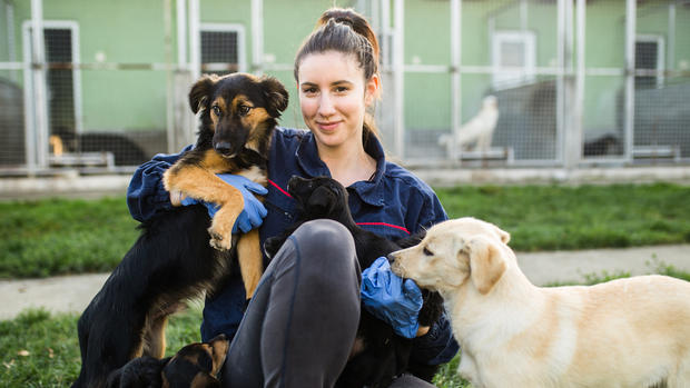 How You Can Help a Shelter Even If You Can't Adopt