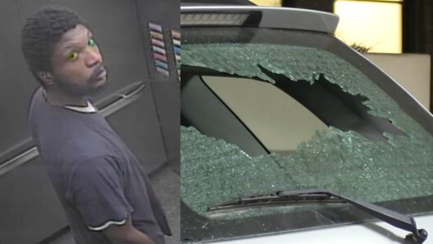 [CHI] Vandal Strikes 3rd Chicago Parking Garage in as Many Days