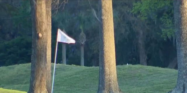 It seems like the least likely place to bury Jimmy Hoffa: under a hole at an exclusive golf course of a venerable Southern resort in Savannah, Georgia.