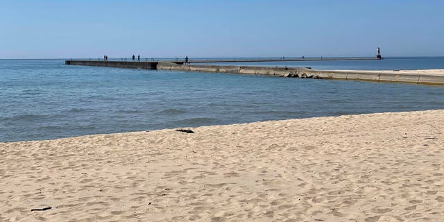 Alyssa DeWitt ran out onto this pier at First Street Beach in Michigan to save a group of girls who waded too far into the water.