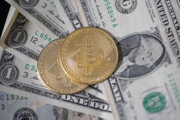 13% of Americans traded crypto in the past year, survey finds