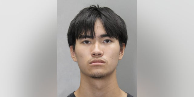 Philip Nguyen, 19, is charged with the fatal stabbing of his father, who was found burnt and buried in his backyard, police said.