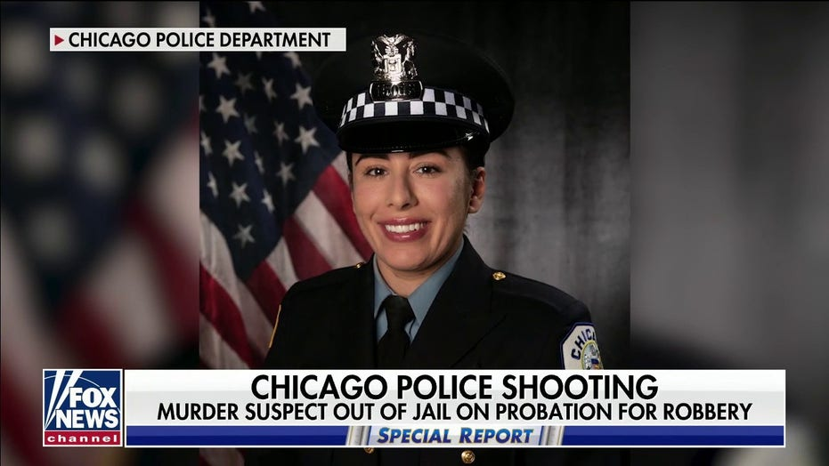 Suspect in Chicago police officer's murder was involved in hit-and-run while on probation